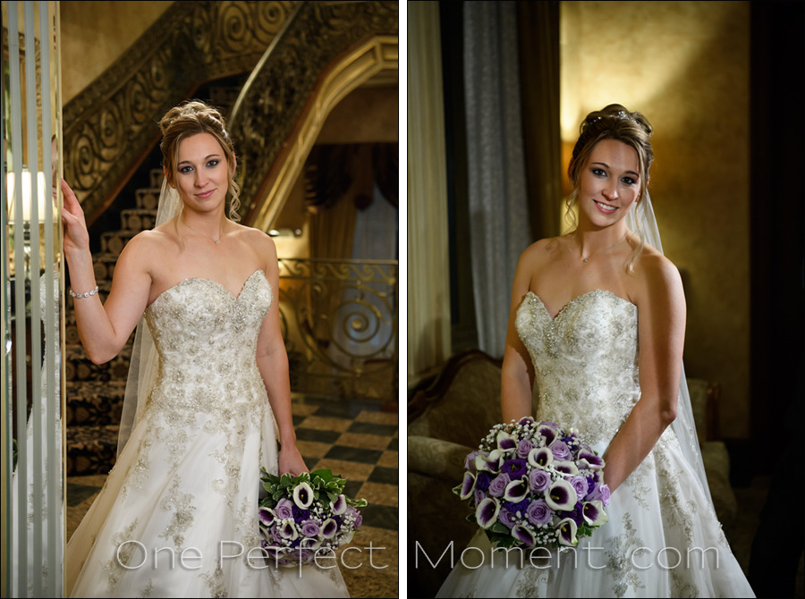 bridal portrait The Seasons wedding photographer NJ